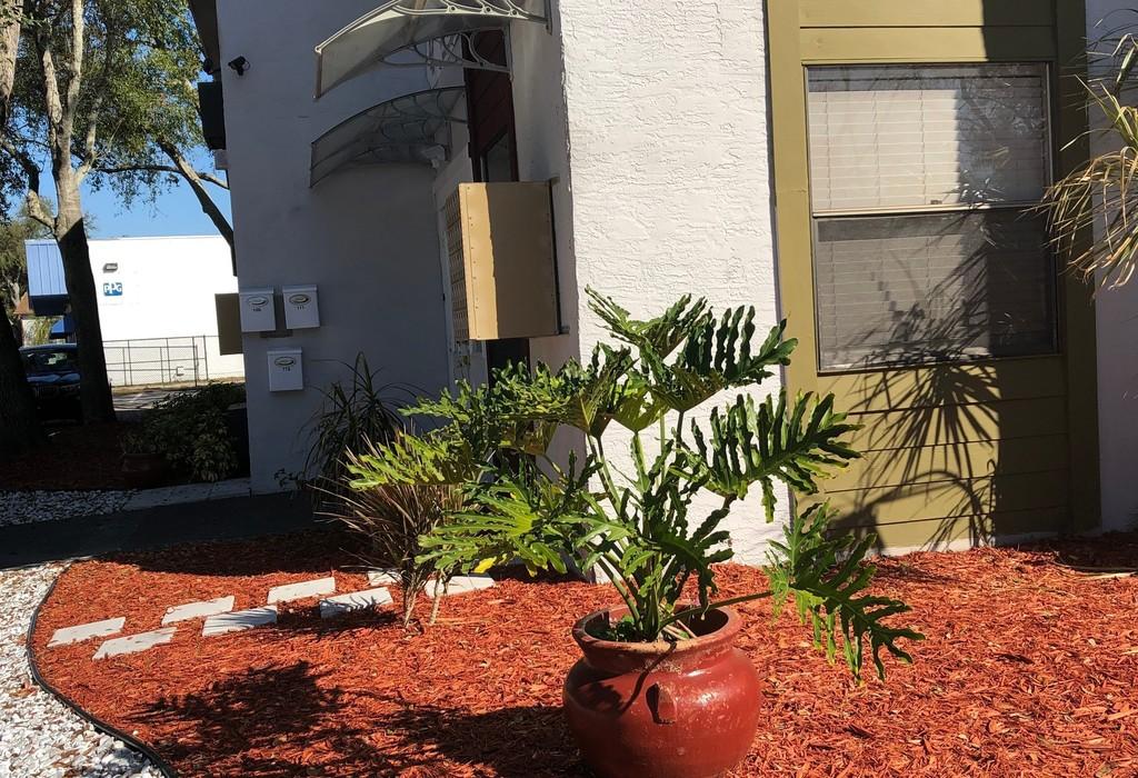 1727 Coachman Plaza Drive Clearwater, FL 33759